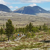 Sølen_Landskapsvernområde_edited.jpg