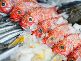 Keeping it fresh from ocean to plate
