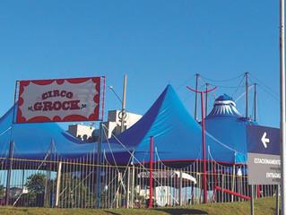 Circo, como tudo começou?