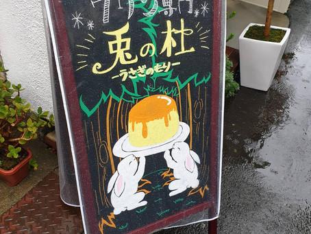 中崎町のプリン専門店🍮「プリン専門 兎の杜」❤️
