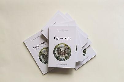 Livre Egonométrie.JPG