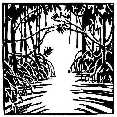 Mangrove n°1