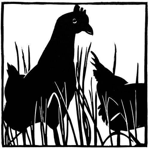 Cocotte et poulette