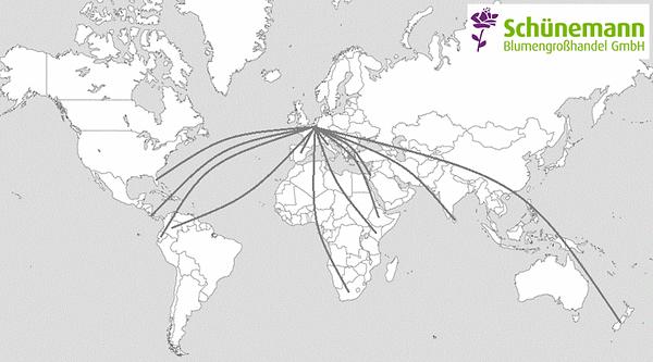 Weltkarte Sortiment.PNG