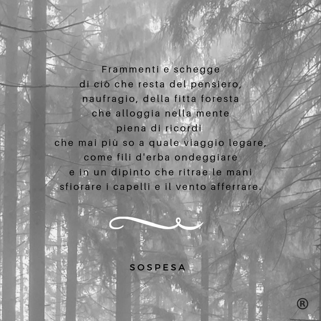 SoniaSpinello_Sospesa