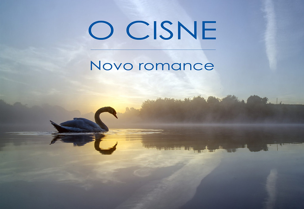livro o cisne, do escritor Brad Crowley