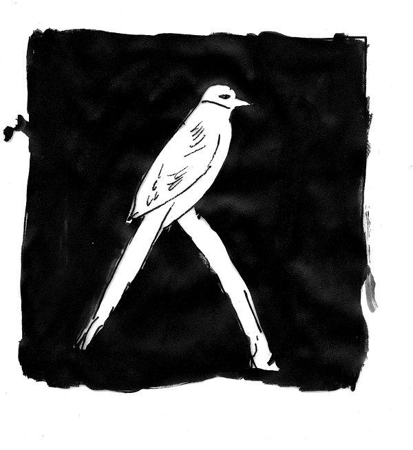 BIRD (for Button).jpg
