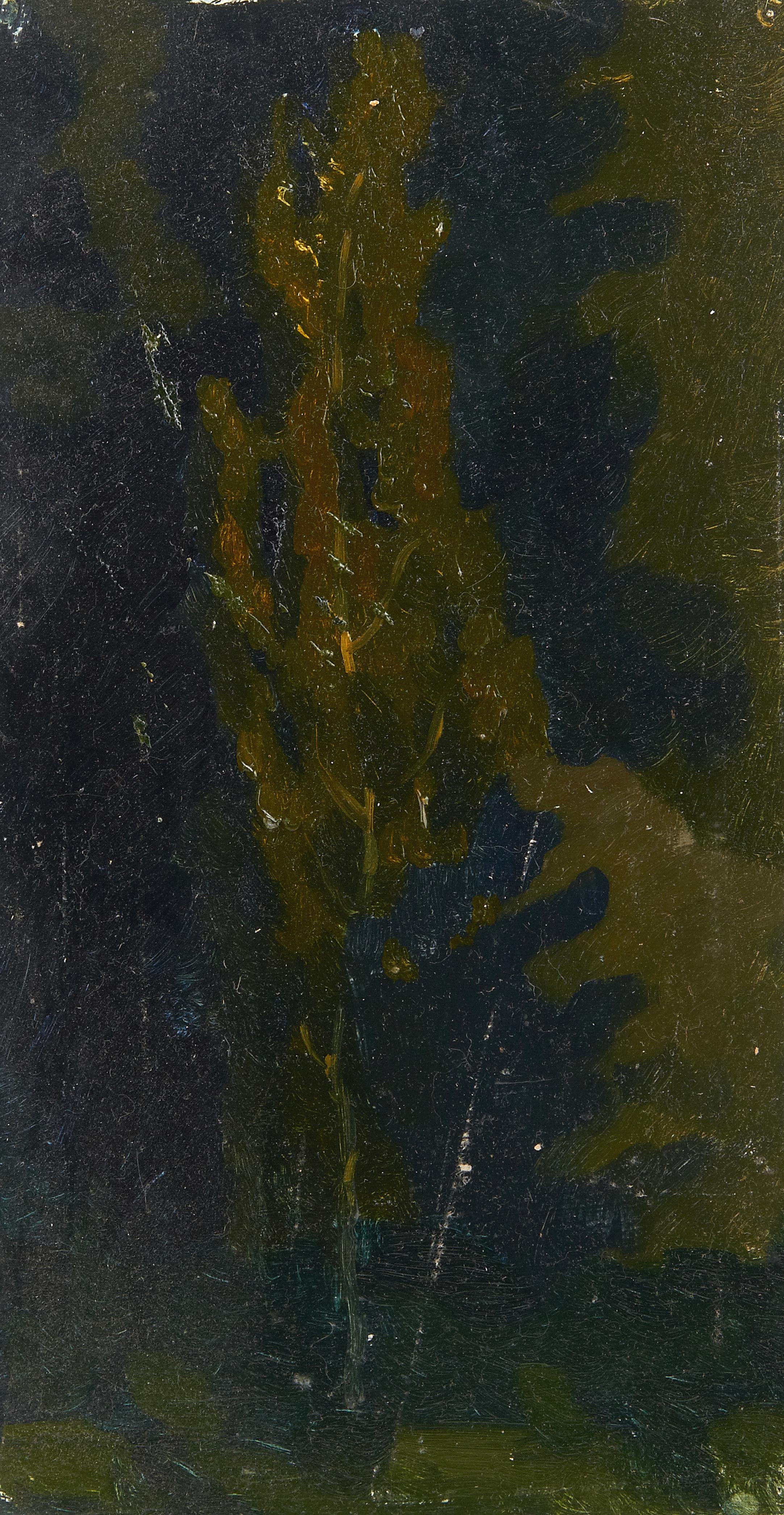Нерехта