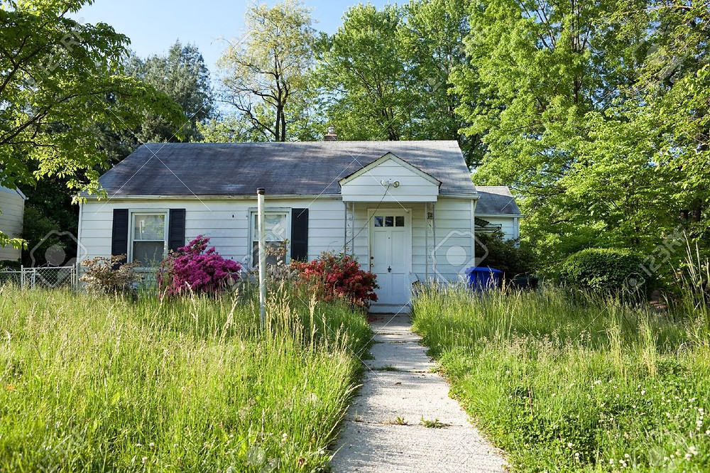 unmowed-lawn-of-an-abandoned-