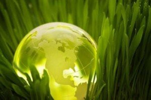 government-industry-sustainability