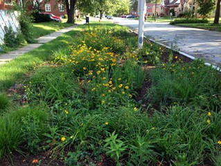 MWRD seeks government partners for green infrastructure project assistance