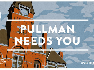 Pullman supporters seek your vote(s) for $250k in Vote Your Park grant program