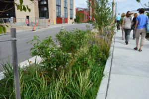 Grant opportunity: MWRD Green Infrastructure Partnership Opportunity Program