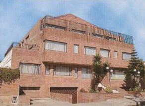 Edificio Nelekonar III