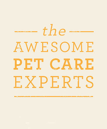 The Awesome Pet Care Experts