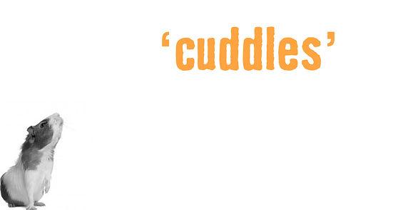Small Animal Care Cuddles