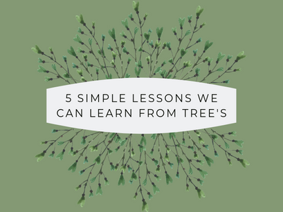 5 simple lessons we can learn from trees