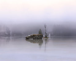 Christmas_morning_mist-by-Danni_Efraim.j