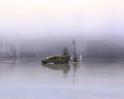 Christmas_morning_mist-by-Danni_Efraim.j