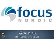 Focus Nordic - däggdjur.jpg