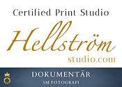 Hellström - Dokumentär.jpg
