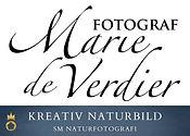 MdeV - kreativ naturbild.jpg
