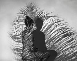 Fineart_11_Make me  a bird so i can fly far far away