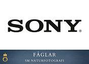 Sony - fåglar.jpg
