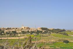 Malta, View from Mdina - Feb 18 2010 - 0
