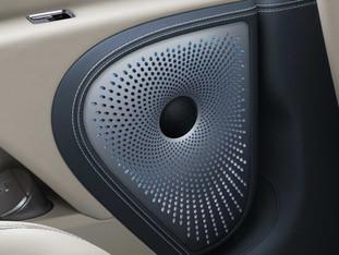 Speaker Cover Flying spur