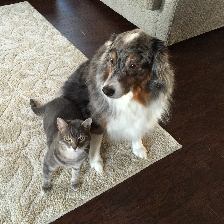 Mason & Oso