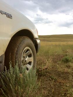 Ranch mud