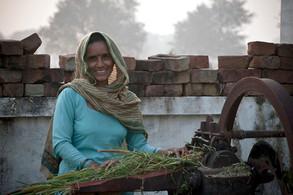 Tiare | India