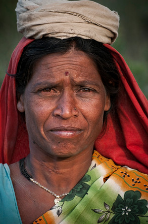 Denali | India