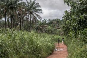 Sierra Leona 1