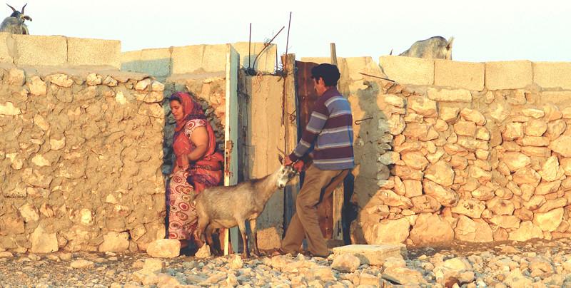 No todo son jaimas en Sáhara.