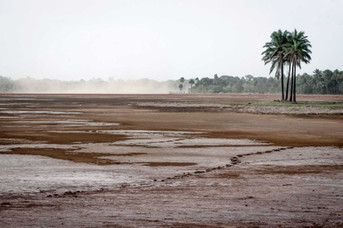 Costa de Marfil 1