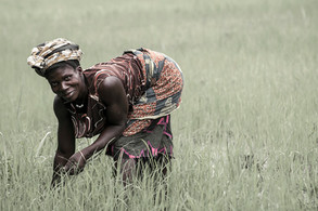 Kamabai 4 | Sierra Leona