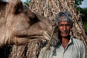Falak | India