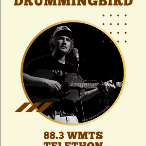 Drumming Bird Poster