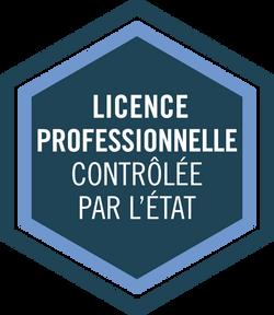 Licences pro.