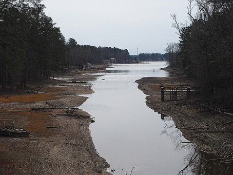Will lake draw down help water quality?