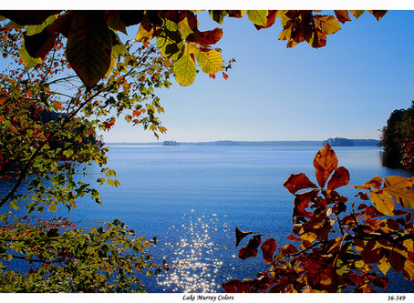 Killing Lake Murray with a thousand development nicks