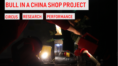 Bull In A China Shop Project 2019