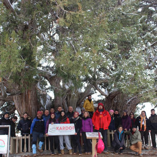 364. Anıt ağaç Alanözü Barajı