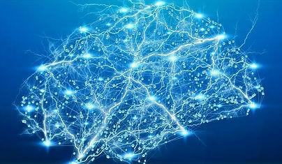 cerveau_neurones_edited.jpg