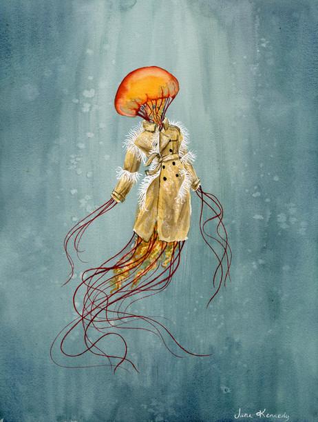 Maison Margiellyfish