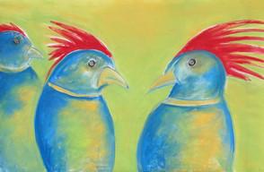 Alison's Birds
