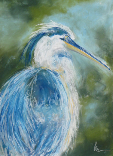 Great Blue 2