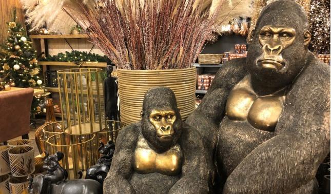 smal gorilla's.jpg